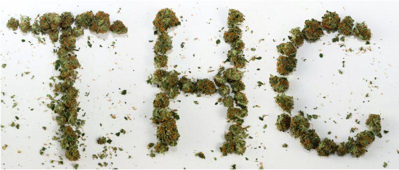מה זה THC